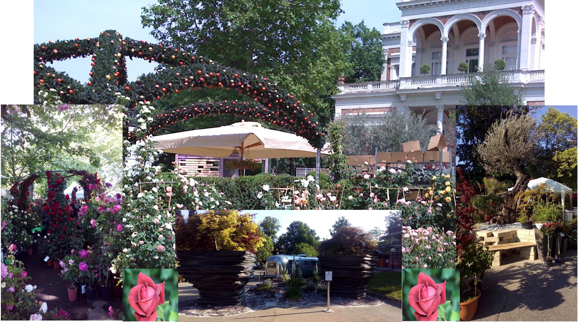 giardini & terrazzi | garden show & mostra mercato - Giardini E Terrazzi Garden Show Mostra Mercato