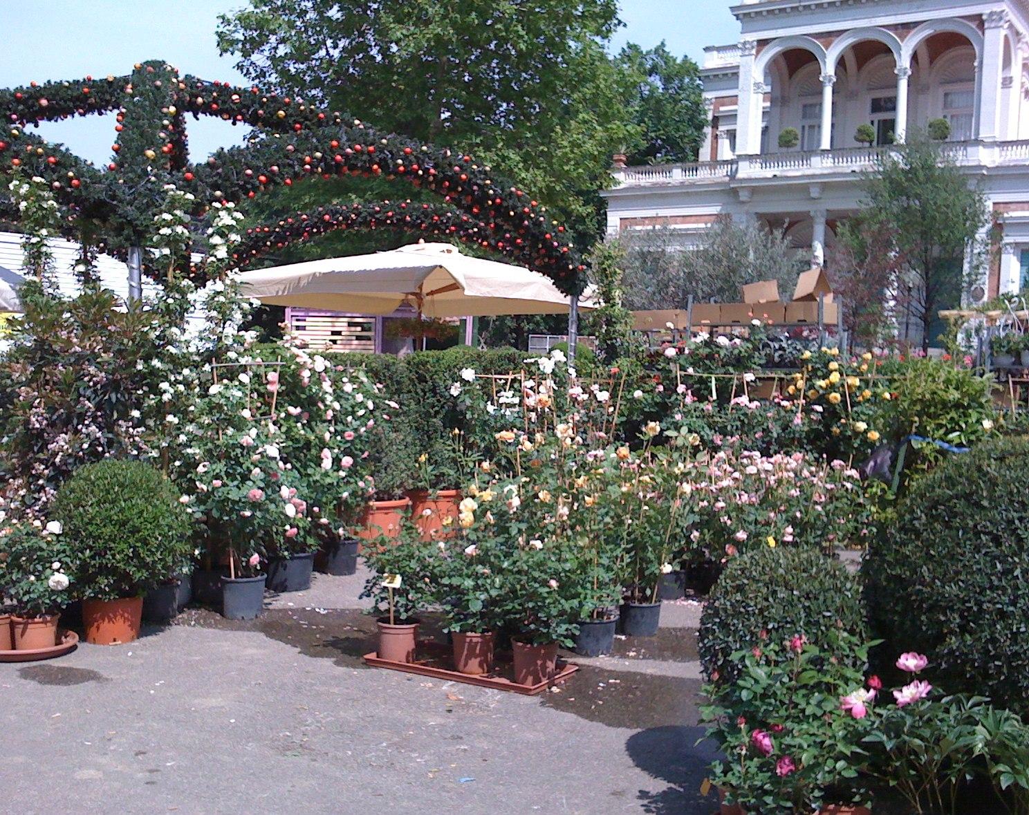 Mostra Mercato Piante,fiori ed arredi, artigianato, wellness ...