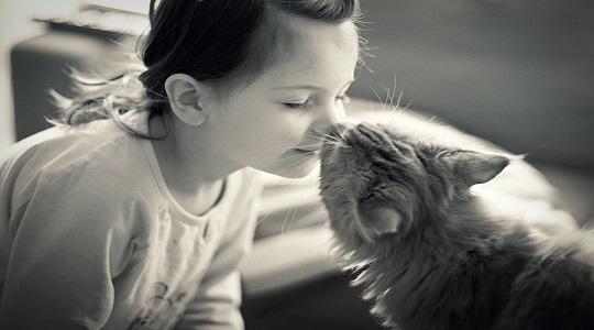 gatti-adorano-padroni